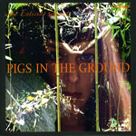 The Enticing Sounds Of Pigs In The Ground